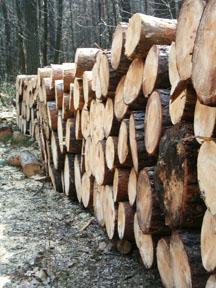 LumberPile